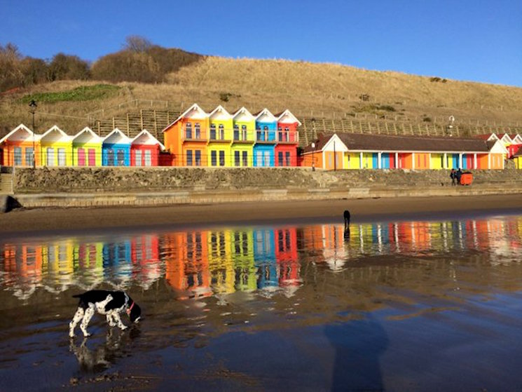 Colourful beach huts and reflection
