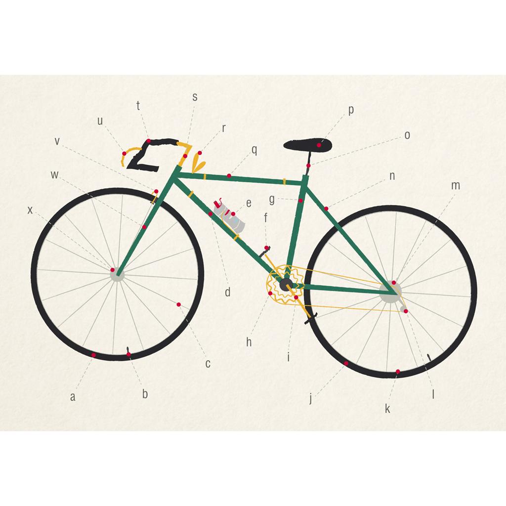 Anatomy Of A Bicycle Card Rex London Dotcomgiftshop