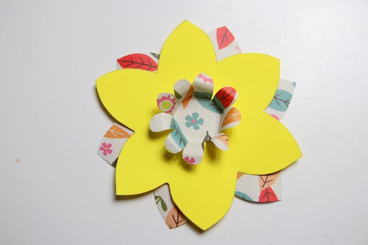 daffodil pinwheels 3