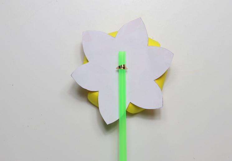 daffodil pinwheels 5
