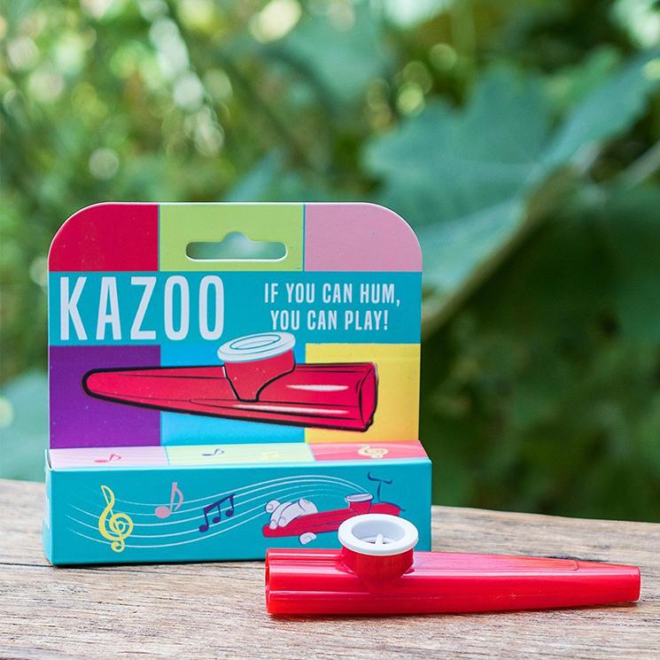 Traditional kazoo