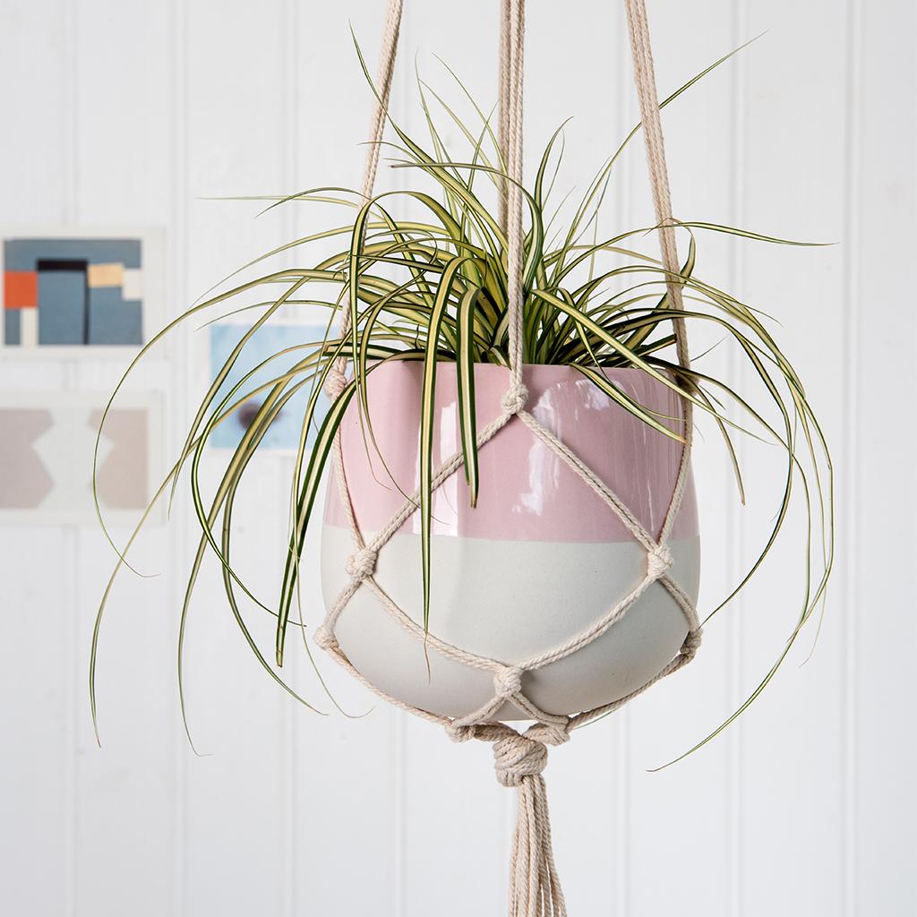 Large Baby Pink Dipped Macrame Plant Pot Rex London Dotcomgiftshop