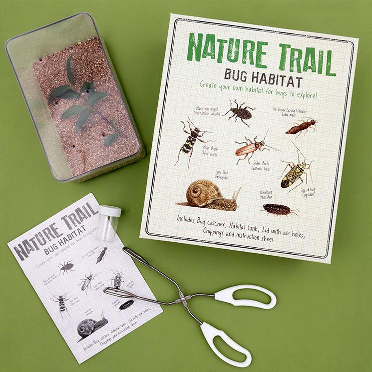 Make your own bug habitat