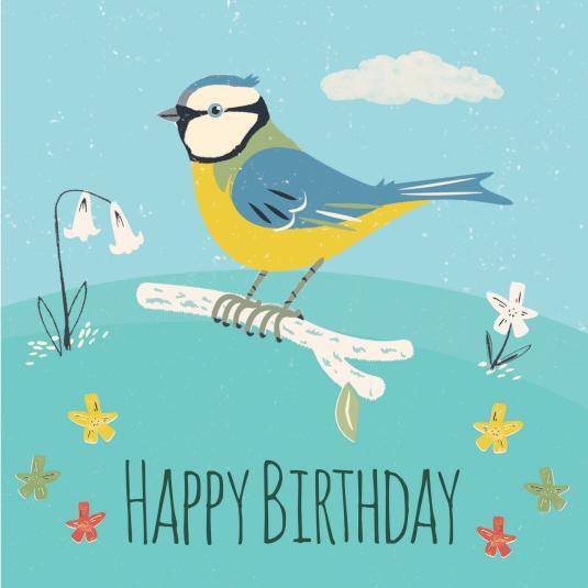 Blue Tit Birthday Card