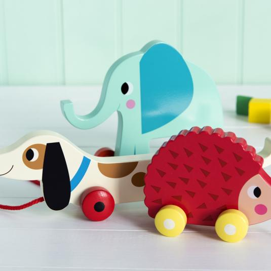 Wooden Pull Toy