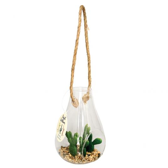 Artificial cactus and succulent plants in hanging pot