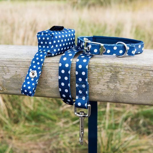 Blue Polka Dot Design Pet Accessories