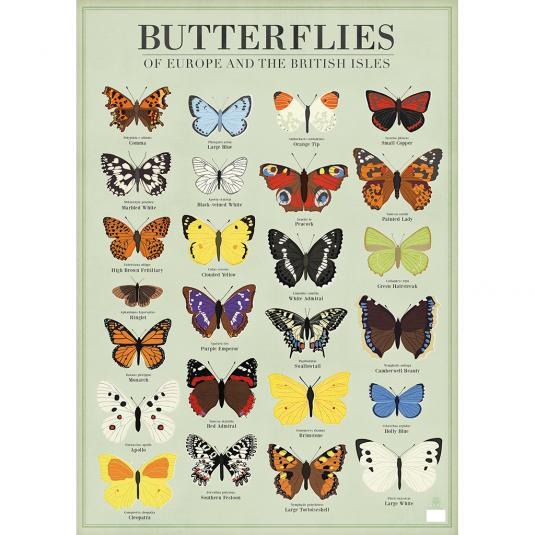 Butterflies Poster Style Wrapping Paper