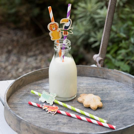 Colourful Creatures Party Straws