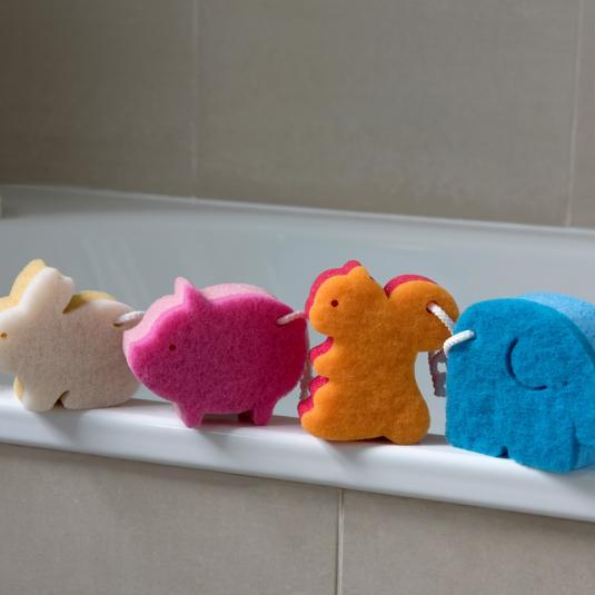 Animal Sponges