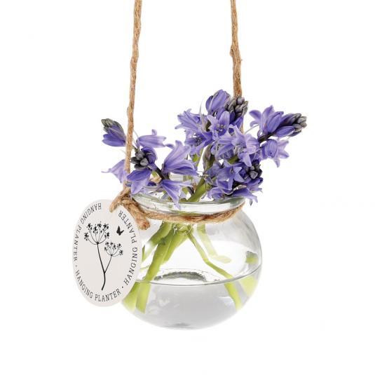 Hanging Glass Mini Posy Vase
