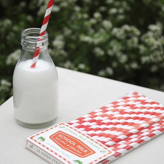 Pack Of 25 School Milk Paper Straws