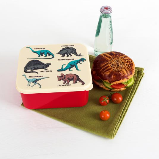Prehistoric Land sandwich sized lunch box with printed lid