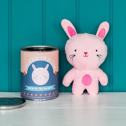 Robyn The Rabbit Friend In A Tin