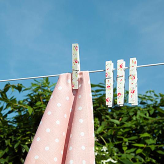 Set Of 12 La Petite Rose Clothes Pegs