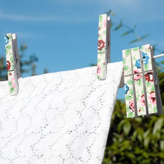 Set Of 12 Rambling Rose Clothes Pegs