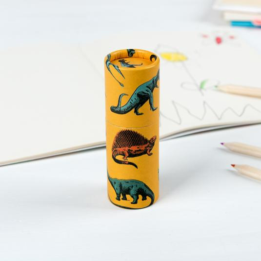 set of 12 kid's colouring pencils in a yellow dinosaur print tube